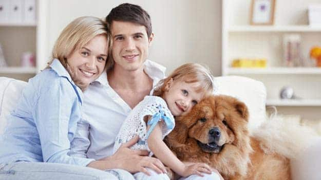 Wills & Trusts dog-young-family Direct Wills Thurrock Park